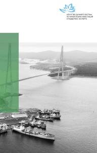 Создание объектов социальной инфраструктуры на Дальнем Востоке на условиях государственно-частного партнерства. Информационно-аналитический обзор