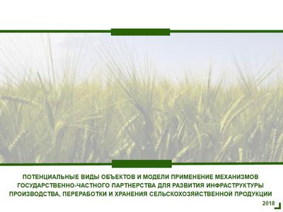 Потенциальные виды объектов и модели применения механизмов ГЧП для развития инфраструктуры производства, переработки и хранения сельскохозяйственной продукции