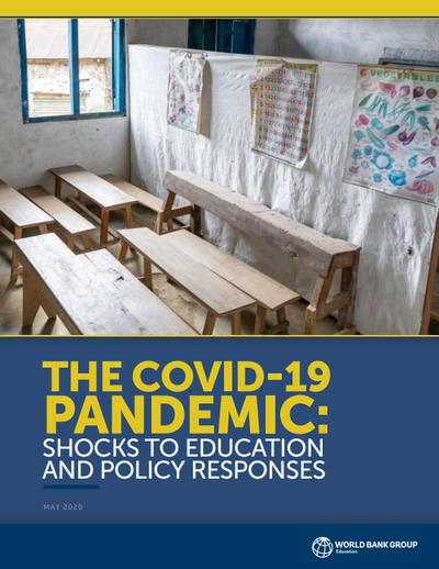 Пандемия коронавируса: влияние на образование и ответные меры государства. Аналитический обзор